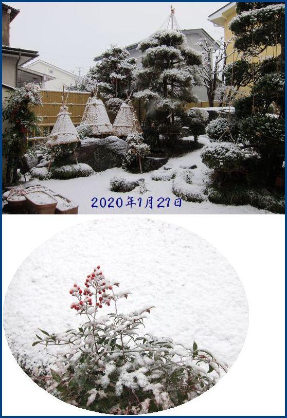 Photo_20200126134901